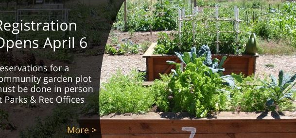 City Garden Plots open for registration April 6th at 8am.