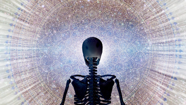 Healthy Bones & Balance
