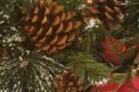 MARK YOUR CALENDAR: Wilsonville Garden Club's Annual Swag Sale.  Dec 6th