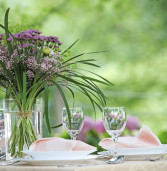 Wilsonville Garden Club Annual Meeting & Potluck.  July 9th. at 11:00am.