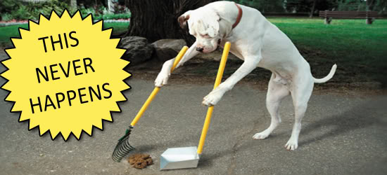 dog-cleaning-up-poop-never-happens2